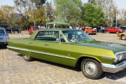 impala verde ren renta