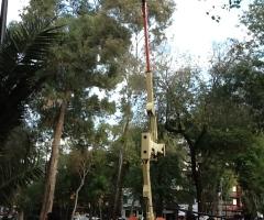 Grua Condor 14 metros para montaje en renta
