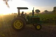 tractor_verde_en_renta (2)